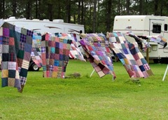 Boy Quilts Blowing In The Wind