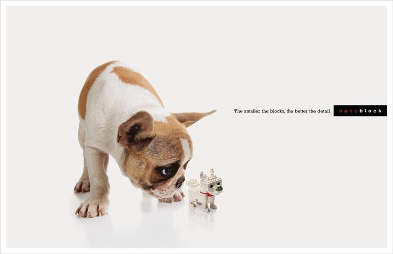 Nano dogs