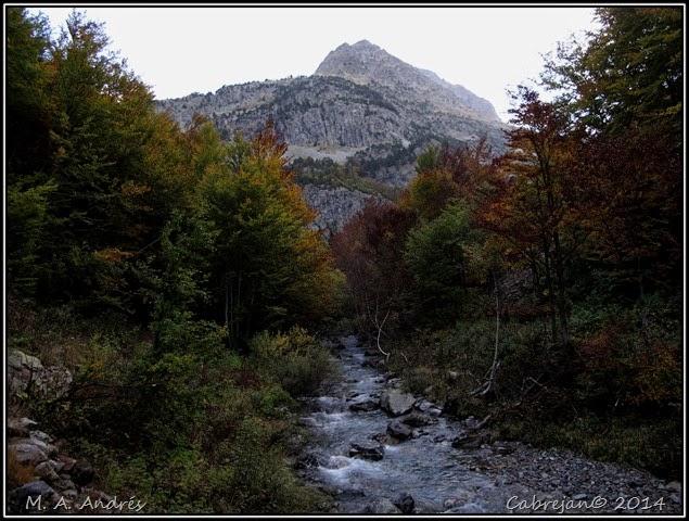 Llena Cantal 017