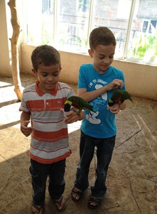 boys in bird kingdom[5]