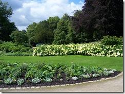 2012.07.01-015 jardin des plantes