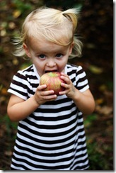 Apple picking Sadie 5