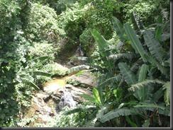 Expedição 13-02-2011 039