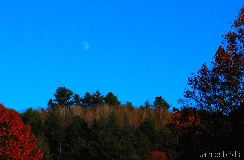 19. Moonrise-kab