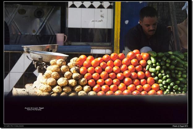 Egypt Day 11_07-14