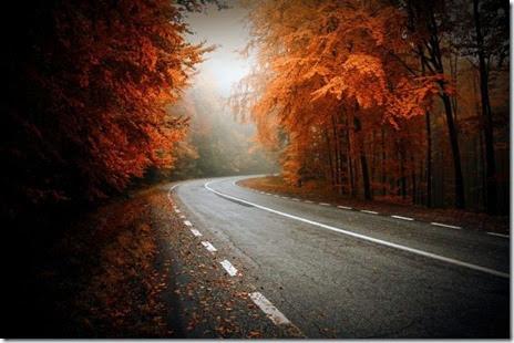 autumn-colors-fall-005