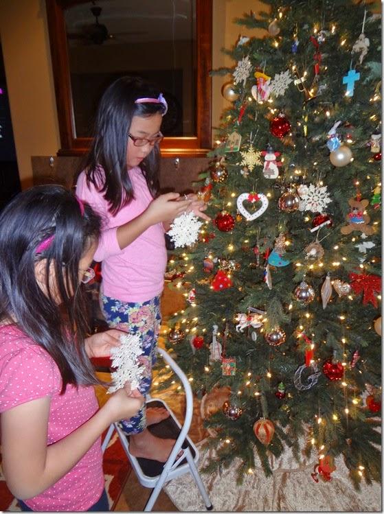Christmas Tree 037