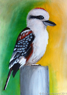 Kookaburra bird in acylics © Evelyn Howard 2011