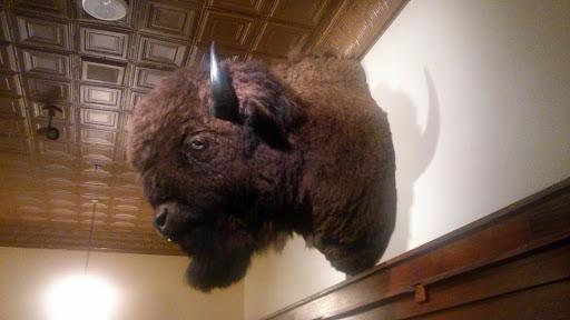 [写真]店内に飾られているバイソンの首