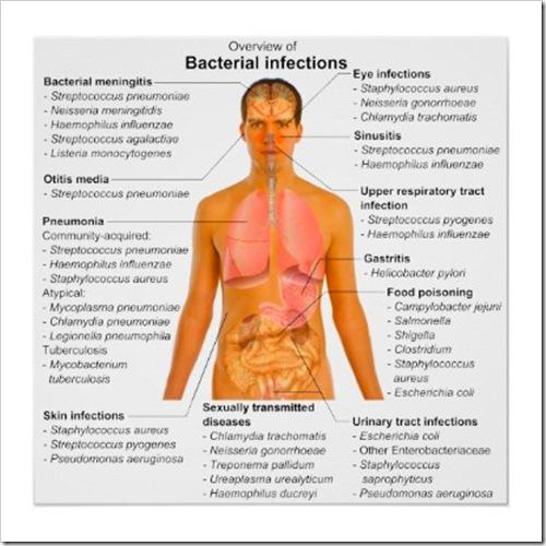 infeccionesbacterianashannacastelli