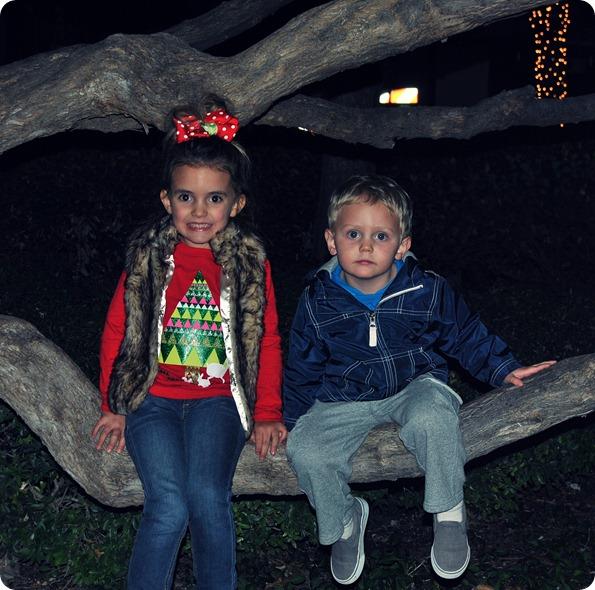 Plano Christmas Tree Lighting 2012 061