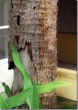 treemerge