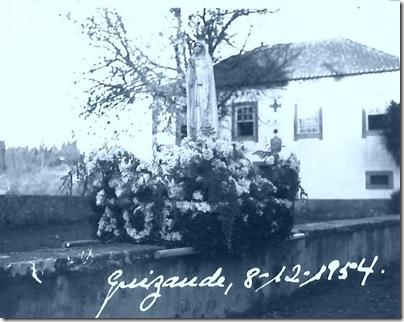cerejeira_guisande_2