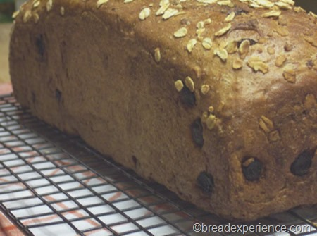 cinnamon-raisin-oatmeal-bread 018