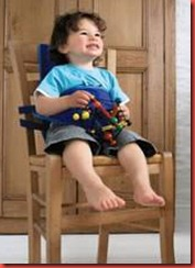 Chair Harness Blue1