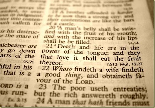 Proverbs 18 21