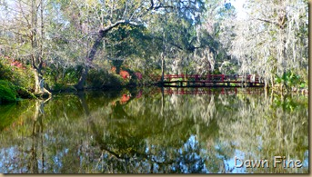 Magnolia Plantation_053