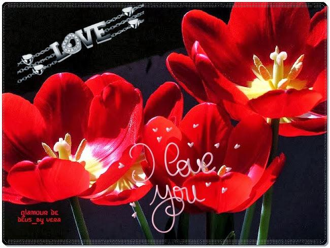 Belas flores vermelhas com mensagem I Love You