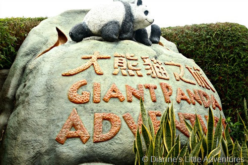 hong kong, ocean park, family, love, gian panda, panda, giant panda adventure, cute