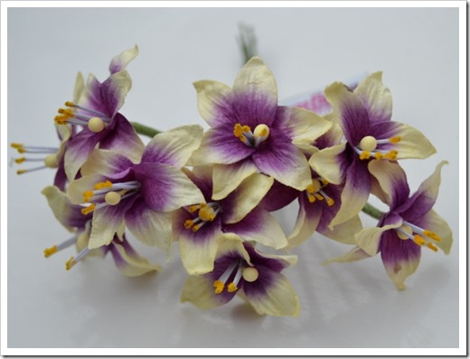 liljor_scrapbooking_violett (2)