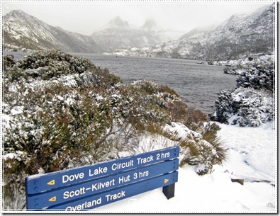 八天塔斯曼尼亞自駕遊–Day 4 遊記 PART 2 在暴風雪中遊DOVE LAKE
