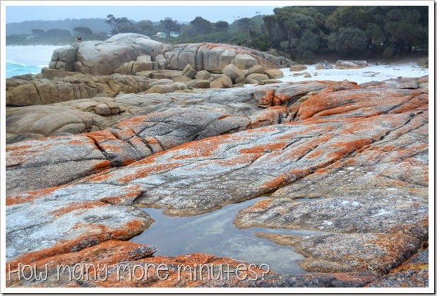 How Many More Minutes? ~ Bay of Fires, Tasmania: part two!