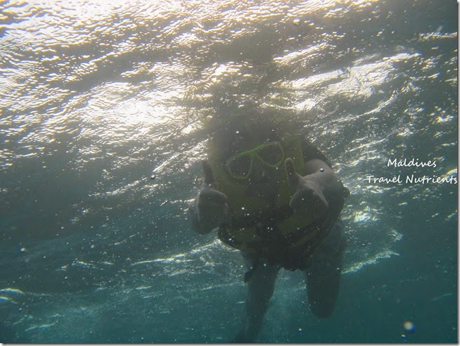 馬爾地夫 浮潛 (50)