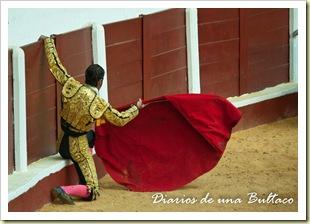 Toros_León-36