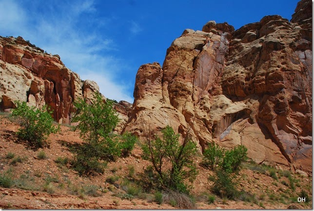 05-22-14 Capital Reef NP (116)