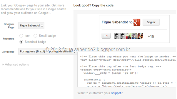 Exibição e configurações do widget do Google