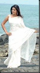 Sneha in white saree