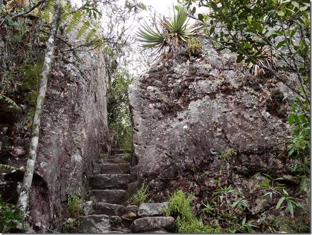Machu_Picchu_DSC02154