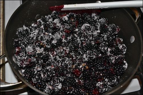 sugared blackberries