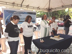 23 sept. 2011 parque la Lira (71)