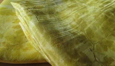 Unbekanntes Waldkraut Eco Print im Sonnenlicht Detail