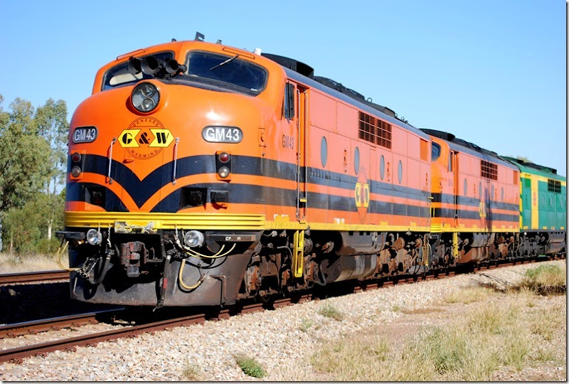 GM43_train