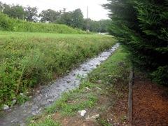 Drainage stream 2