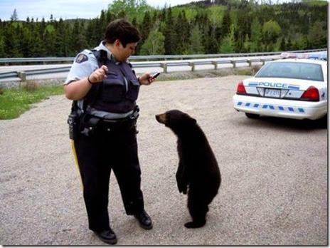 cops-fun-good-032