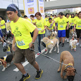 Pet Express Doggie Run 2012 Philippines. Jpg (39).JPG