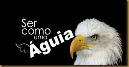 aguia 2