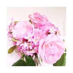 Pink-Petal