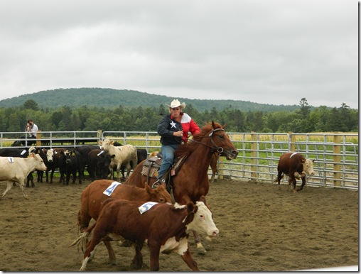 Team Penning 2011 157