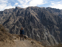 Colca Canyon - Condor viewpoint