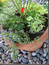 Planting Flowers 041