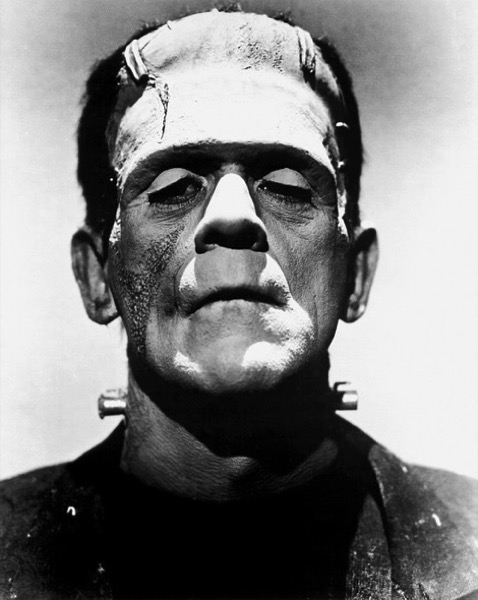 CC Photo Google Image Search Source is pixabay com  Subject is frankenstein 394281 640