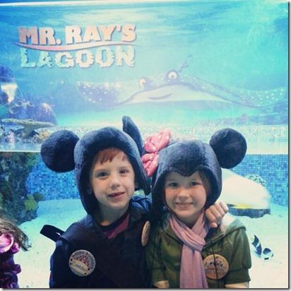 2012-12-30 3 Diesel & Emma Found Nemo
