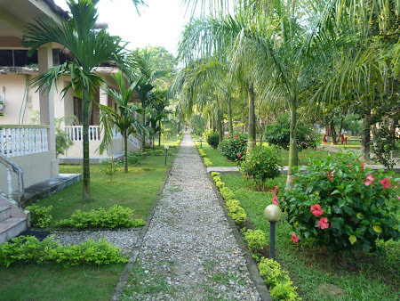 Chitwan Paradise Lodge