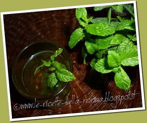 Bevanda fresca alla menta piperita (6)