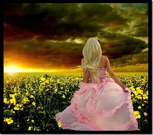 flor día del amor (7)