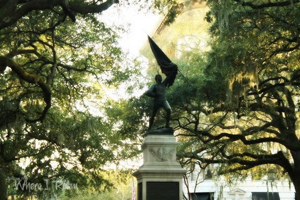Savannah scenes 15